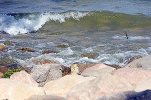 IMG_1872 waves