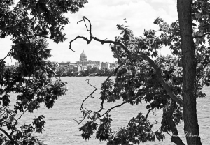 IMG_2207 skyline from picnic point bw