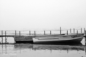 IMG_2383 Wingra boats fog