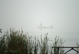 IMG_2420 fishing in fog