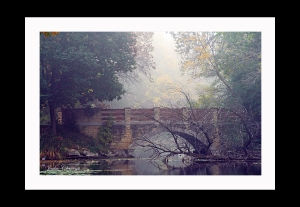 IMG_2449 bridge