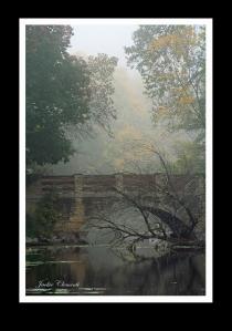 IMG_2451 arboratium bridge