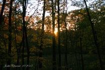 IMG_2629 sunset