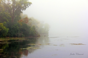 IMG_4667 foggy morning