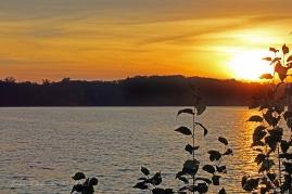 IMG_5410 Sunrise