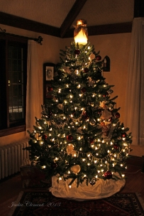 IMG_9195 tree