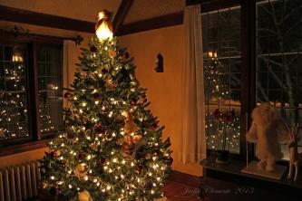 IMG_9199 reflection tree