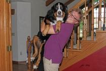 Nate picking up extra large Baloo